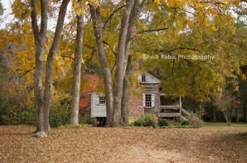 The William Harris Homestead (2)