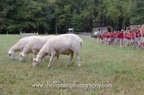school field trip at whh-96